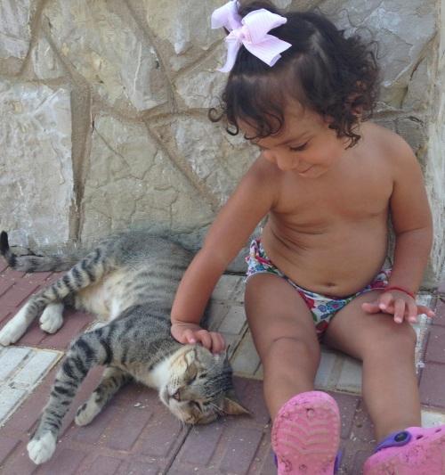 niños y gatos